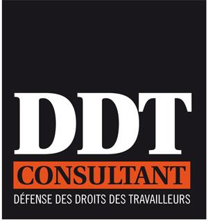 DDT Consultant Logo