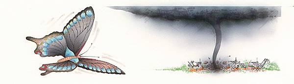 « L'effet papillon »